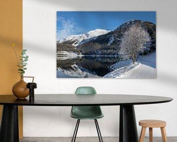 Lake Davos van Peter van Dam