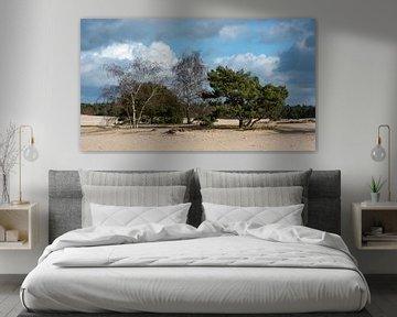 Bomen op Lange Duinen van Rob IJsselstein
