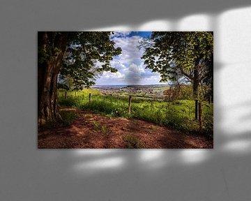 Schaelsberg van Rob Boon