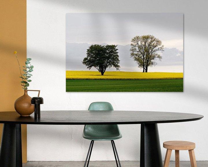 Beispiel: Zwei Bäume im Rapsfeld von Ralf Lehmann