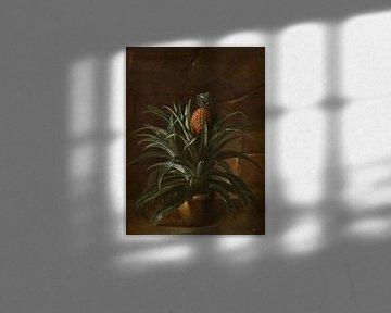 Ananas in einem Topf, Jean-Baptiste Oudry