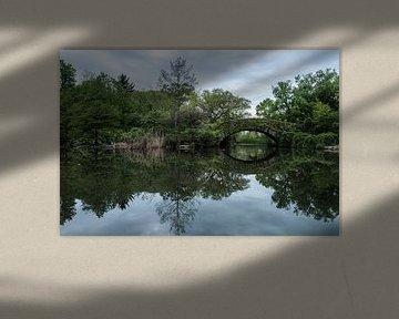 Central Park | New York City van Laura Maessen