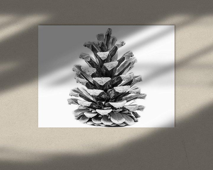 Sfeerimpressie: Dennenappel zwartwit van Martijn Tilroe