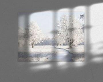 Winter-Wiese von Lars van de Goor