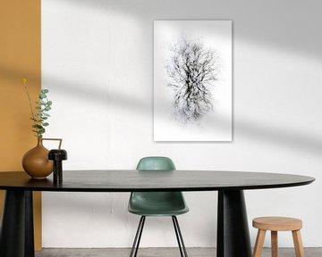 Abstrakte Collage eines Baumes in Schwarz-Weiß von Marianne van der Zee