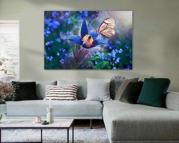 Vlinder in wit op bloem in blauw