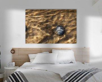Lege kokkel schelp van Beschermingswerk voor aan uw muur