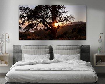 coucher de soleil dans les montagnes de la campagne espagnole avec vue sur la mer et la brume