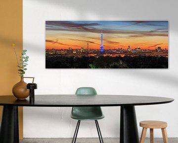 Berlijnse skyline