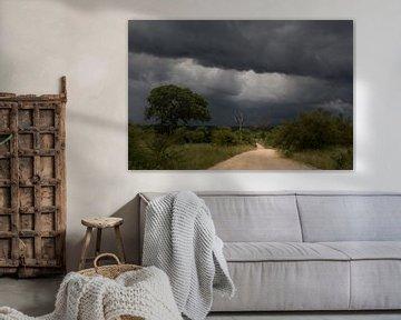 Gewitter auf dem Weg von Marijke Arends-Meiring