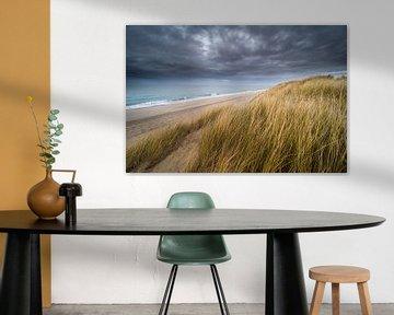 Les dunes sur Karin de Bruin