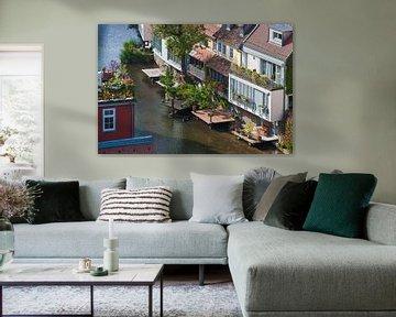 Häuser am Fluss Gera in Erfurt von Werner Dieterich