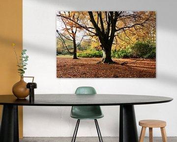 L'arbre aux feuilles d'or sur Wendy Hilberath
