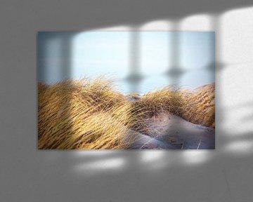 Goud gras en wit zand van Florian Kunde