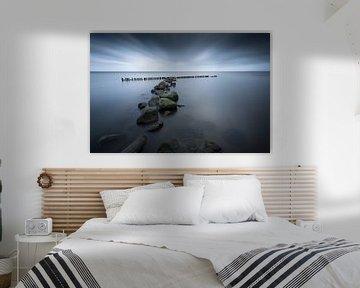 """""""Blue lake"""" van Karel Ton"""