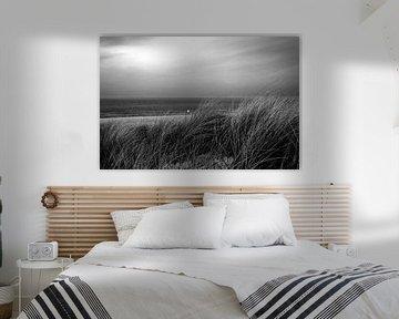 Gras in de duinen bij de zee