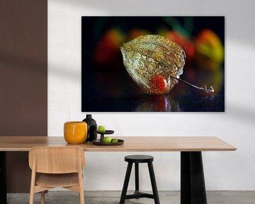Lampionbloem van Henk Langerak