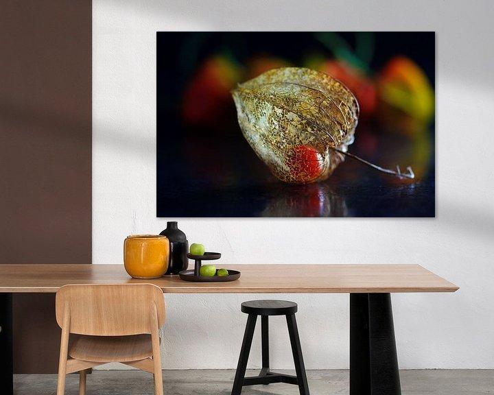 Sfeerimpressie: Lampionbloem van Henk Langerak