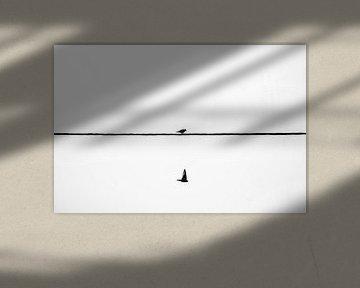 Zwei Vögel... von Jarno Bonhof