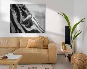 Zebra wat heb je lange wimpers, close up in zwart-wit van JM de Jong-Jansen