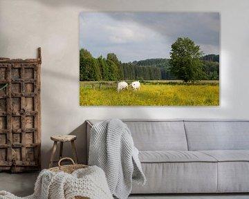Kühe auf einer Wiese mit blühenden Blumen, Ardennen von Ger Beekes