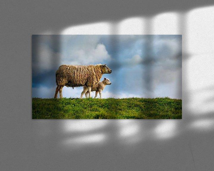 Impression: Mère avec fille - agneaux sur Texel sur Texel360Fotografie Richard Heerschap
