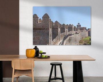 Stadtmauer, Avila, Castilla y Leon, Kastilien-Leon, Spanien, Europa von Torsten Krüger
