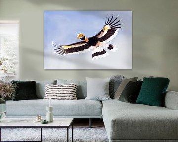 Neushoornvogel... van Arno van Zon