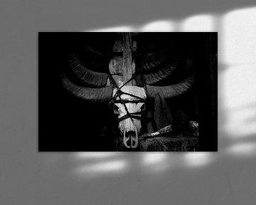 Buffelschedel, buffalo skull van Corrine Ponsen
