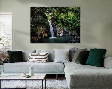 Waterval in de jungle van Flores, waterfall van Corrine Ponsen