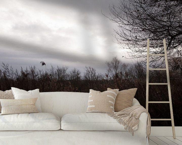 Beispiel fototapete: Ein Sonnenstrahl bringt Licht in die Winterdunkelheit von Gwen Laremans