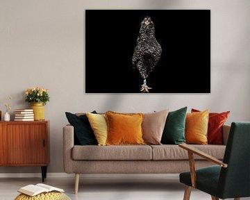 Deftige kip, chicken portrait van Corrine Ponsen