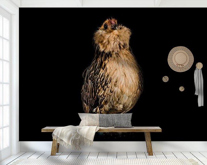 Sfeerimpressie behang: Kippen portretje, portrait of a chicken van Corrine Ponsen