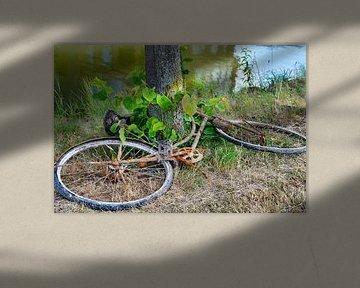 Roestige fiets uit het water van JM de Jong-Jansen