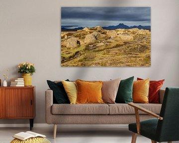 Island von Eric van Nieuwland