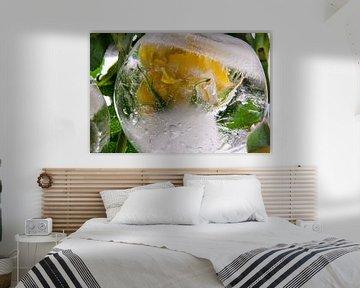Gele roos in ijsbal van Marc Heiligenstein