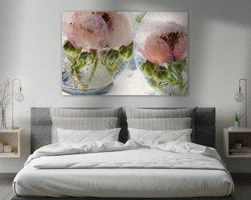 Blüte der Wilden Brombeere in Eis  2 von Marc Heiligenstein