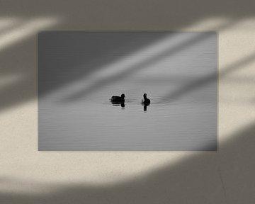 Freunde (schwarz-weiß) von Gwen Laremans