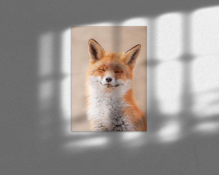 Beispiel: Zen-Fuchs von Dick van Duijn