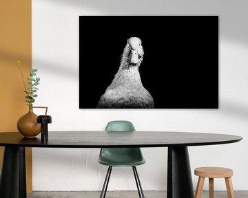 Schwarzweiß-Porträt Pekingente von Corrine Ponsen