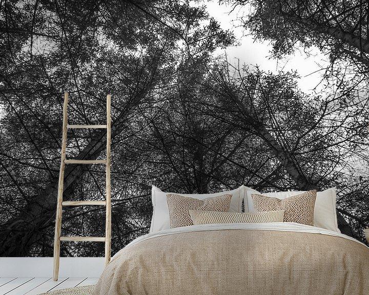 Beispiel fototapete: In der Luft mit den Bäumen. von Martijn Tilroe
