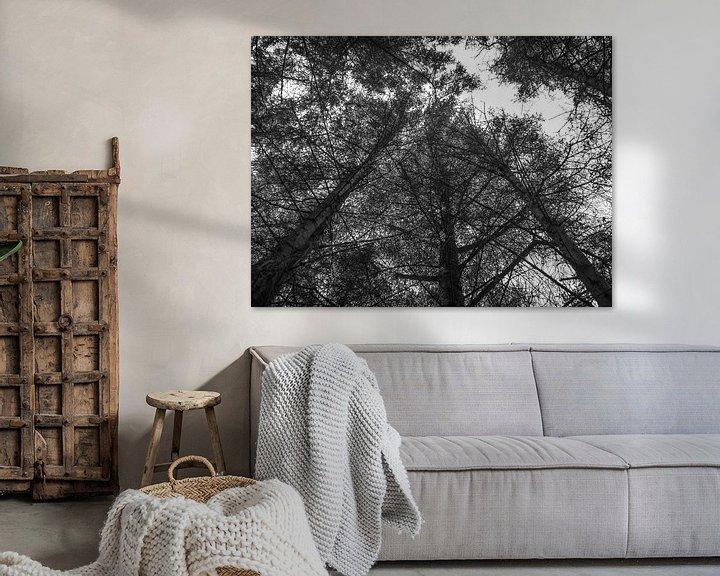 Beispiel: In der Luft mit den Bäumen. von Martijn Tilroe