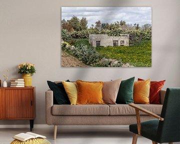 Malta von Eric van Nieuwland