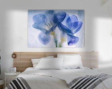 Blaue Freesien in Eis 1 von Marc Heiligenstein