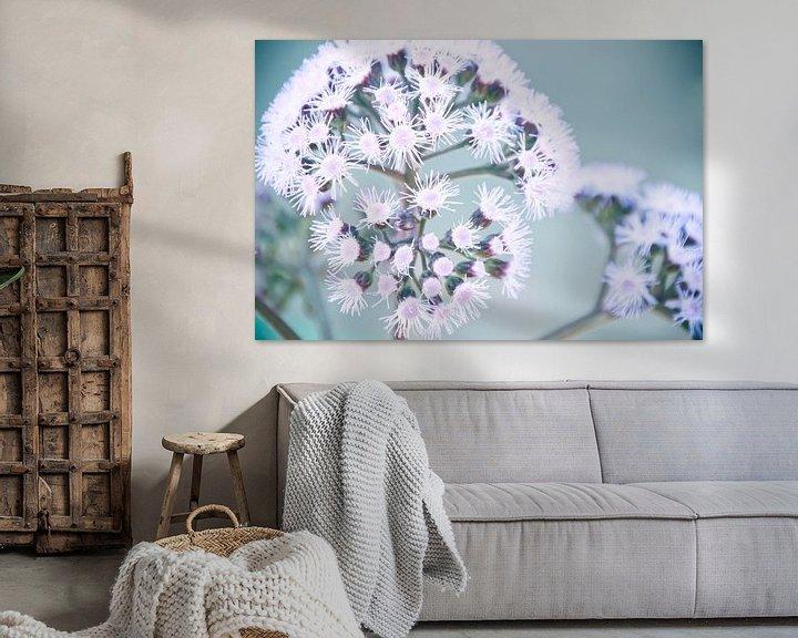 Sfeerimpressie: Purple Dotty bloem van Arja Schrijver Fotografie