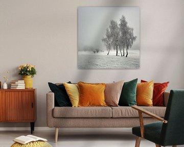 Familien von bruno blais
