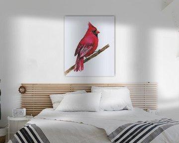 Roter Kardinal von Bianca Wisseloo