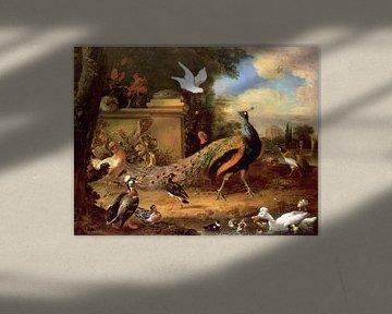 Pfauen und andere Vögel am See, Melchior d'Hondecoeter