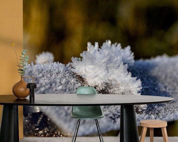 Sfeerimpressie behang: Na een ijskoude nacht van Harald Schottner