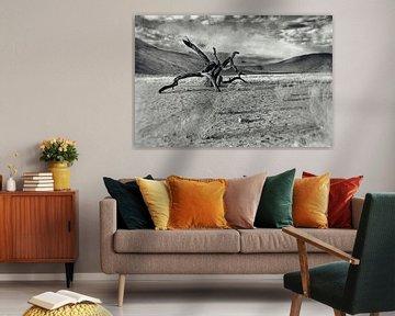 Dood hout in de Namib woestijn Namibië 2